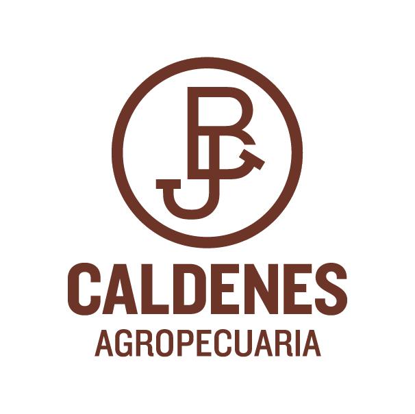 CALDENES