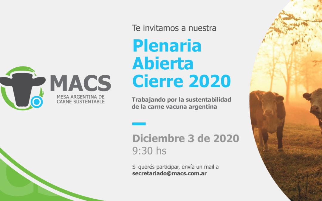 Plenaria Virtual y Abierta – Cierre 2020